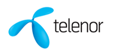 TELENOR - USP INNOVATION