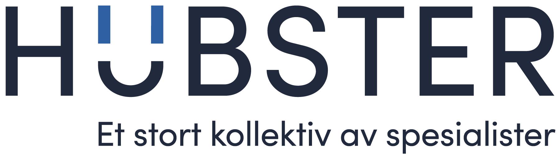 Logo av Hubster